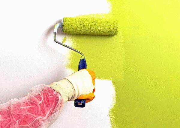 Обязательным условием покраски гипсокартона является предварительное шпаклевание поверхности