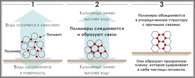 Схема, отображающая процесс испарения воды с последующим образованием прочных связей при нанесении водоэмульсионной краски на поверхность
