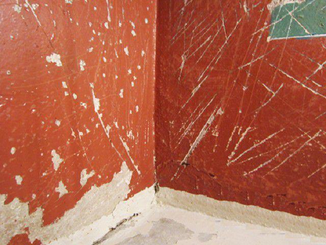 Для того чтобы мыльный раствор быстрее пропитал слой водоэмульсионки, на стене делают многочисленные царапины или насечки