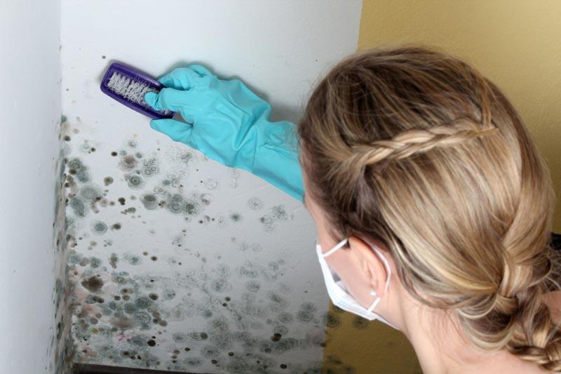 Плесень и грибок способны нанести вред не только обоям, но и здоровью человека, поэтому перед началом работ стоит провести дезинфекцию стен